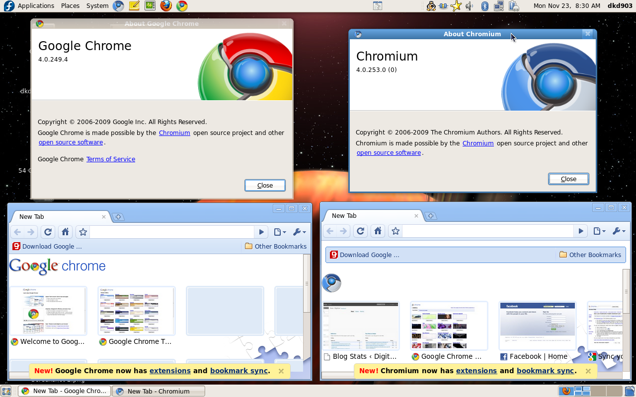 Google Chrome & Chromium side by side