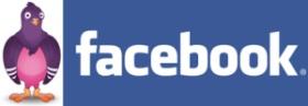 Facebook Chat Using Pidgin