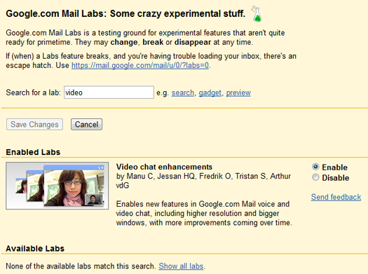 GMail Labs Search