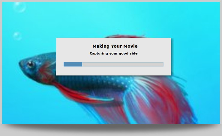 Movie Making in Progress - Timeline Movie Maker