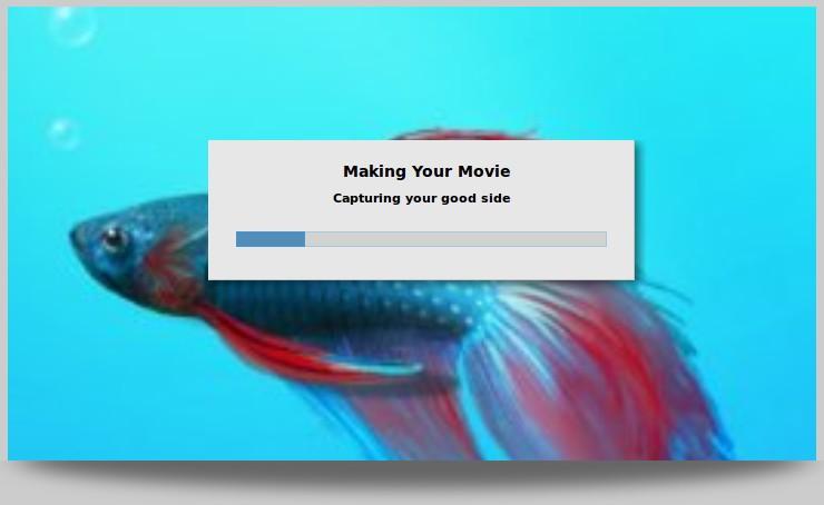 Movie Making in Progress - Timeline Movie Maker