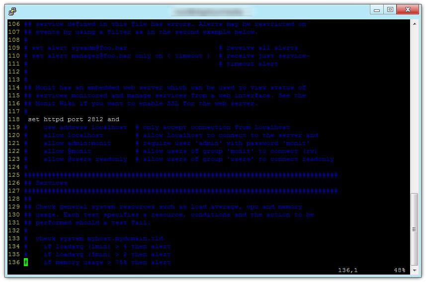 Monit config file detail