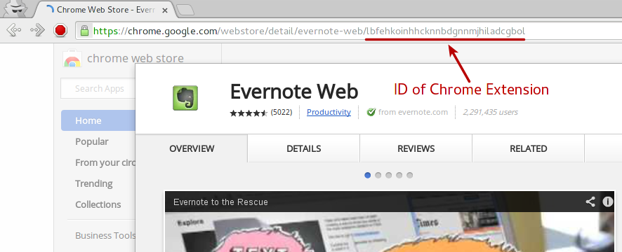 Chrome Extension get ID from Chrome webstore