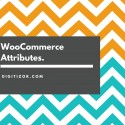 WooCommerce Attributes.